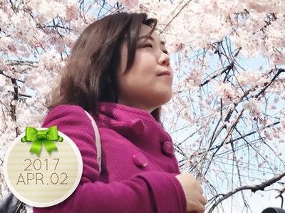 4/2 桜 01